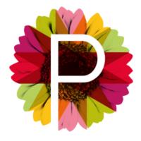 perfection-logo